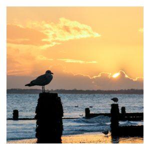 Aldwick Beach Sunset Card