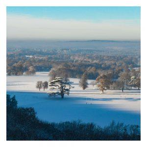 Duncton Hill Snow Scene