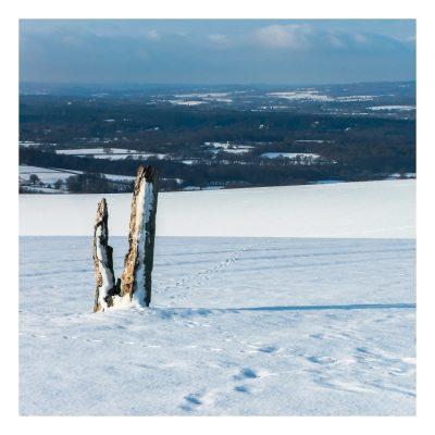 Snowy Duncton Hill West Sussex